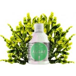 Kallos Algae Shampoo - Kallos šampon z mořských řas